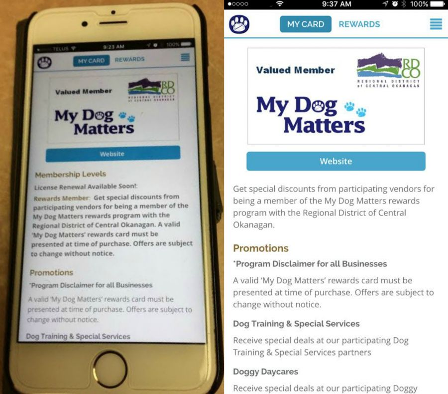 New app makes dog license renewal quick and easy