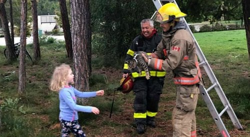 Firefighters come to the rescue of family's young cat 'Eddie' in Lake Country